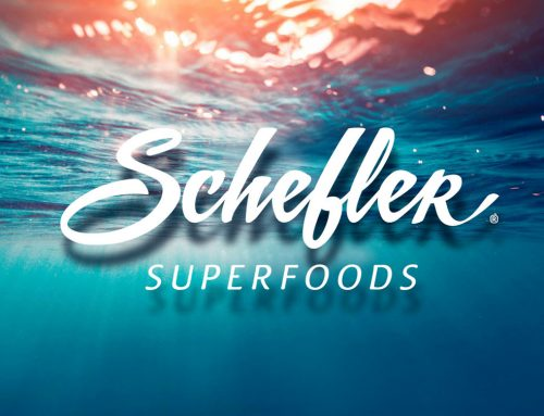Logo Schefler