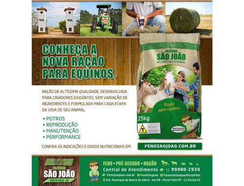 Criação de e-mail marketing – Fazenda São João